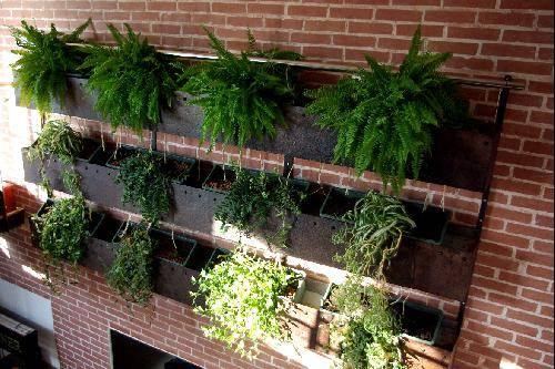 R alisation d 39 un mur de verdure int rieur martigues for Habiller un mur interieur